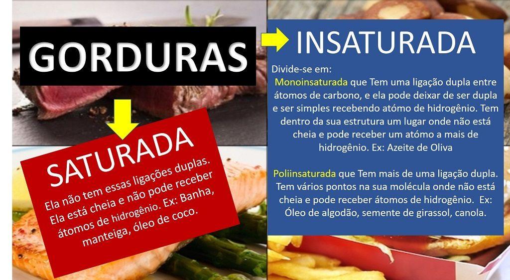 Diferença entre gordura saturada e insaturada